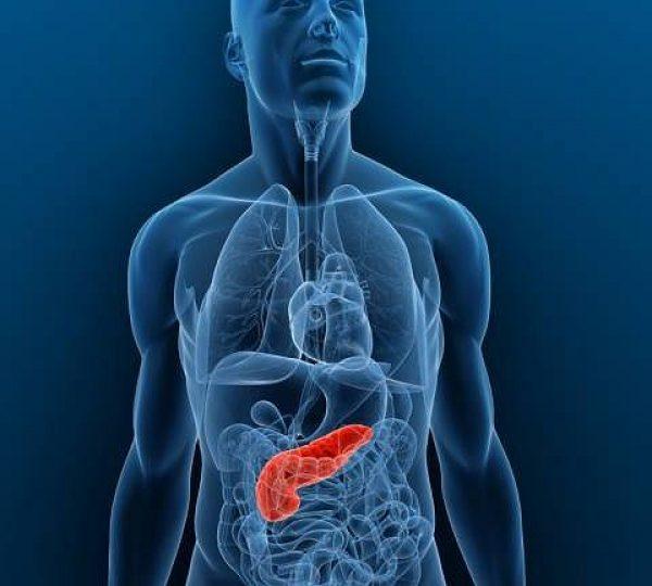 analisi cliniche caserta fegato