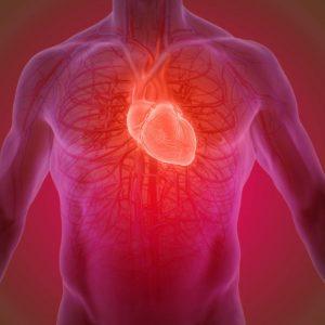 check up cardiovascolare caserta
