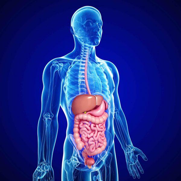 profilo metabolico test caserta